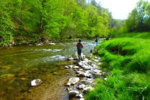 moniteur guide pêche nive des aldudes