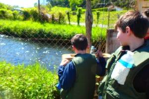 truite pisciculture nive des aldudes